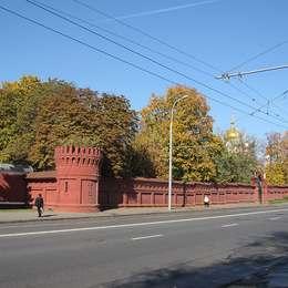 Вид на Новодевичье кладбище